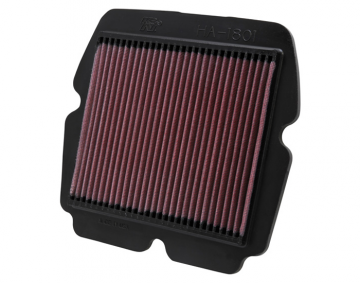 K&N High Flow Lifetime Air Filter for GL1800, F6B