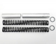 Fork Spring Kit for GL1800/GL1500